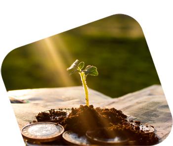 Qué son los Growth Loops: ejemplos